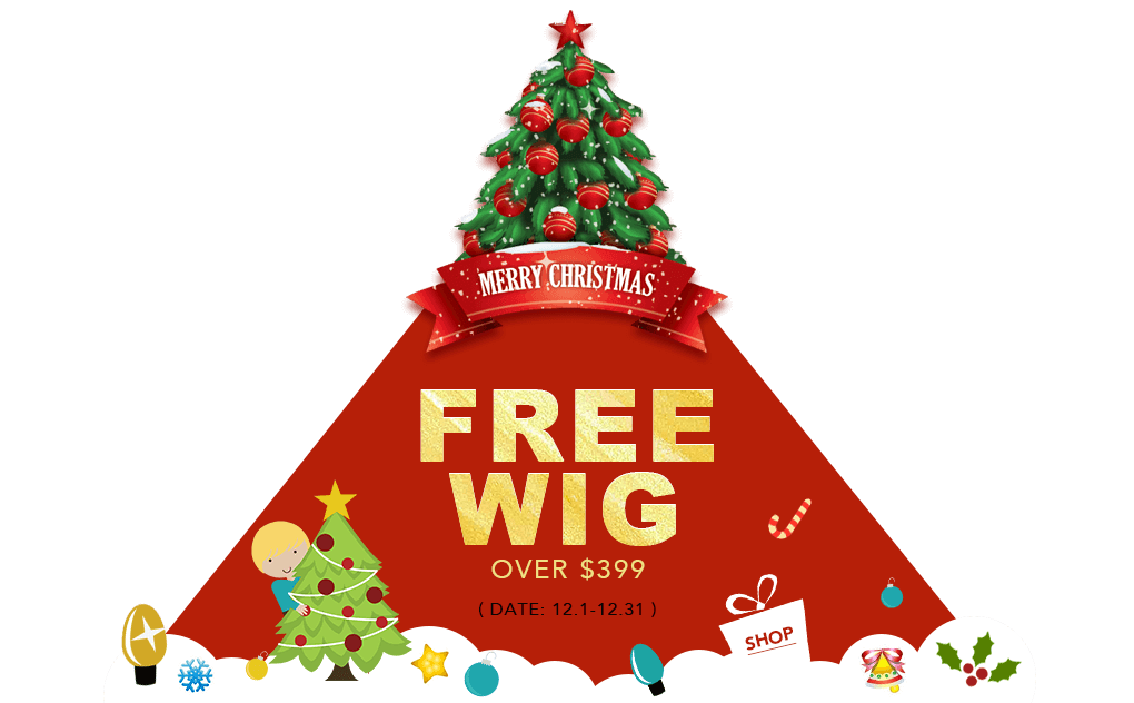 FREE WIG OVER $399 12.1-12.31